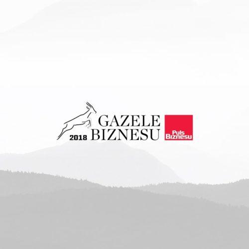 VirtusLab received a Gazelle of Business
