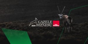 gazele_2-min
